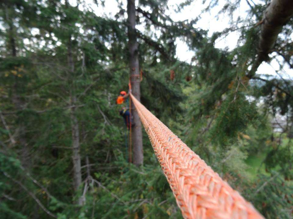 Clipping Into the Skyline Setup For Tree Services in Comox Valley
