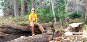 Owner of Precision sitting back on a fallen tree. Hero image for blog page.